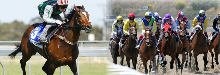 Mijas Hippodromo Horse Racing on the Costa del Sol