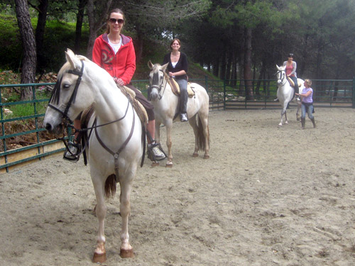 Horse Riding in Andalucia, Malaga, Spain